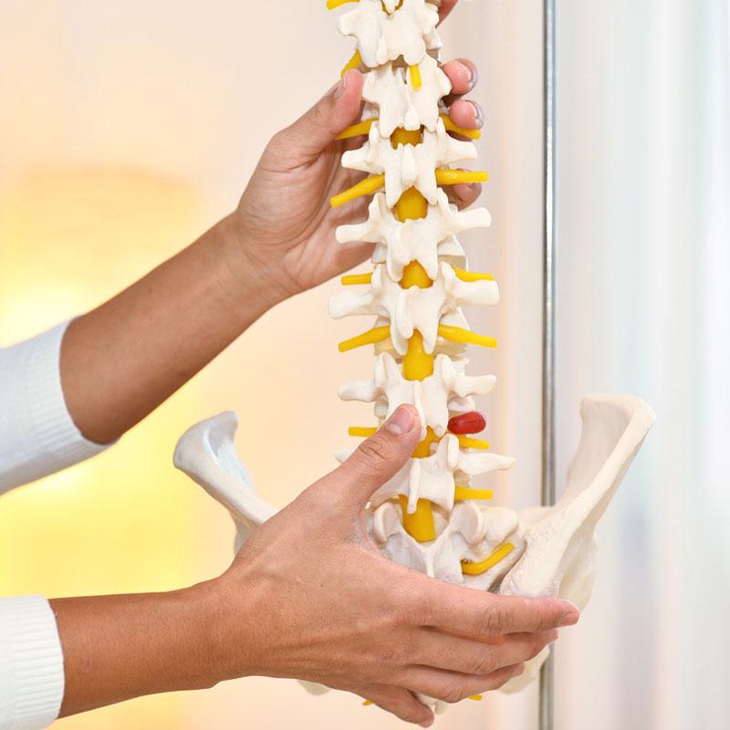 Osteopathie Wiesbaden Angebote